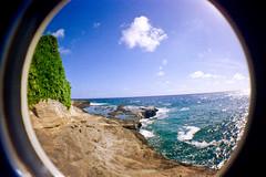 Ivy covered cliffs (mmockingbird) Tags: oahu cliff jumping ocan sea summer rock rocky outcrop fish eye fisheye lens film