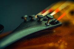 Tuning/Violin (Hanna Tor) Tags: macromonday boltsandscrews fasteners screw bolt violin