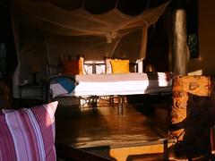 Stanley Safari Lodge siesta time