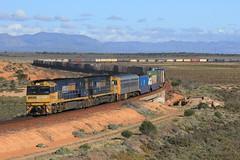 Express Freight (evenst3132) Tags: nr locomotives australia express freight pacific national nr89 nr91 railways railroad intermodal trains yorkeycrossing