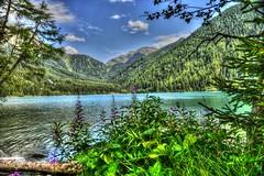Lago di Anterselva (giannipiras555) Tags: natura colori fiori landscape panorama