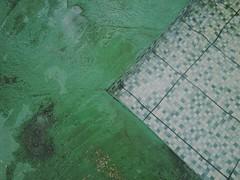ten$ion (meeeeeeeeeel) Tags: abstrata abstract kudak iphoneography distortion agua water pattern verde green pool piscina linhas lines geométrico geometria geometry