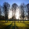 Just walkin' the Dawg (amcgdesigns) Tags: andrewmcgavin forres lg grantpark lgg5 snapseed square phone phonephotie trees shadows figureinlandscape dogwalker sunny sunshine