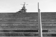 Positivo (Micheo) Tags: granada spain bnbw bwbn blancoynegro blackandwhite architecture arquitectura abstract abstracto minimalismo minimalism escaleras escalones steps street stairs
