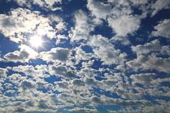Winter clouds... (js hsu) Tags: clouds sky winter wintersky skyinthewinter 藍天白雲 藍天 白雲 雲朵 白色雲朵 canon canon5dmarkiv ef2470mmf28liiusm