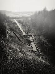 Crompton Moor (Missy Jussy) Tags: cromptonmoor shaw water walkinglandscape walkingtrail dogwalk britishweather mist trees countryside mono monochrome moodylandscape landscape lancashire oldham outdoor outside blackwhite blackandwhite bw sepia southpennines pennines