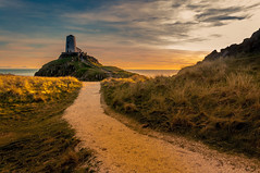 Golden Path (Tony Shertila) Tags: europe britain wales anglesey ynysllanddwyn lighthouse sanddunes path outdoor sky golden rhosyrcommunity unitedkingdom gbr