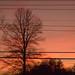 Sunset/MoonRise 1.20.18