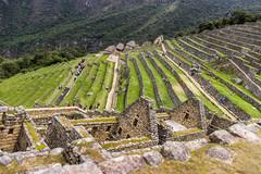 Machu Picchu 40
