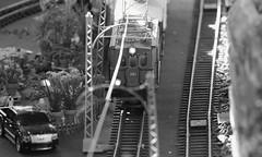 Train-show '18, Morton Arboretum. 2 (EOS) (Mega-Magpie) Tags: canon eos 60d indoors the morton arboretum lisle il illinois dupage usa america train show bw black white mono monochrome