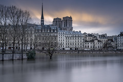 Flood between the islands (Sizun Eye) Tags: îledelacité ilesaintlouis oldtown paris seineriver river flood crue janvier2018 january2018 city cityscape france iledefrance sizuneye tree nikond750 d750 nikon tamron2470mmf28 tamron 2470mm leefilters leebigstopper
