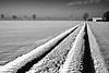 skidmark (++sepp++) Tags: bayern deutschland de bavaria germany landschaft landscape landschaftsfotografie winter schnee snow bw blackwhite monochrom einfarbig sw schwarzweis kalt cold sonnig sunny reifenspur skidmark
