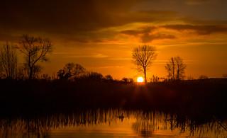Greylake at dawn
