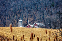 Farm On The Hill (Roy Manchester) Tags: blue canon canonllenses catskill 5dsr 7020028lisii ef70200f28isiiusm availablelight eos ef gps newyork unitedstates us geotag hudsonvalley farm buildings landscape
