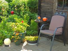 Capuccino im Garten (Sophia-Fatima) Tags: mygarden meingarten naturgarten gardening sitzplatz gartenplatz terrasse gartenhaus