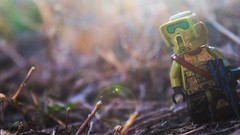 A New Dawn (RagingPhotography) Tags: lego star wars outside outdoor outdoors minifigure minifig figure toy toys plastic 41st 41 corp corps republic clonetrooper clone trooper bright shiney shine sunlight sun light rays sunrays pretty beautiful colorful bokeh dazzle dazzling glistening glisten ragingphotography