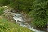 Rivière (Audrey Abbès Photography ॐ) Tags: ruisseau rivière eau fleurs pierre hautesalpes france provencealpescôtedazur paca audreyabbès nikon d600 verdure nature