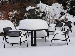 Lisle, IL, Morton Arboretum, Patio Dining Interrupted