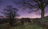 Roach End Barn.  55.365. (FadeToBlackLP) Tags: peakdistrict roaches roachendbarn nightsky nightphotography lightsandshadows ruins dilapidated trees moonlight stars beautiful moonlit