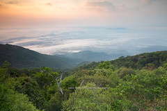 Sea of Cloud at Sunrise - Khao Khitchakut (Chanthaburi) (baddoguy) Tags: above aerial view atmospheric mood backgrounds beauty in nature below cloud sky cloudscape color image copy space covering dawn dramatic famous place fog forest heaven high angle hiking hill horizon horizontal local landmark mountain peak national park no people photography plain religion rock object formation sea silhouette spirituality sunrise thai culture thailand tourism tranquil scene tranquility travel destinations tropical climate pattern wallpaper decor
