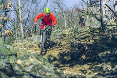 2018.02.25. Borsberg MTB-5 (Michael_Topp) Tags: fahrrad mountainbike himmel licht dresden sony nex