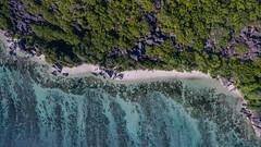 """Aerial of the most beautiful beach in the world Anse Source d'Argent Seychelles (dronepicr) Tags: nikon """"indianocean"""" allgemein tauchen inselstaat holiday schnorcheln drone kreol """"indischerozean"""" flitterwochen island hochzeitmarriage reisen luftbild geotagged africa landscape landschaft honeymoon strandurlaub phantom 3 photo tropen aerial aerialphotography uav natur ferien insel foto beach sommerferien travel strand seschellen urlaub afrika granitfelsen felsformationen dive wanderlust wedding drohne bacardi raffaello werbung advertisement"""
