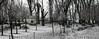 cuaiz nevado (JoseFuko8) Tags: nieve fuentesauco zamora paisajes nevada invierno canon 7d mark ii pueblo campo