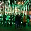 Light Up Poole (auroradawn61) Tags: lightuppoole digitallightartfestival poole dorset uk england february 2018 lumixlx100 afterdark candid squidsoup submergence green