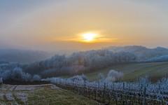 Zagorje (34) - frost (Vlado Ferenčić) Tags: veternica zagorje hrvatskozagorje vladimirferencic frost vladoferencic winter mountains sky nikond600 nikkor357028 hrvatska croatia