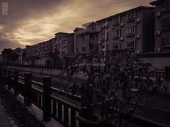 Le long du canal... (TchinChine !) Tags: chine pays qingpudistrict shanghai xujing