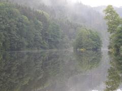 Ilz bei Passau-Hals (cesp-one) Tags: passau ilz hals nebel natur fluss