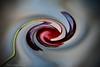 """Réalité abstraite ... ( P-A) Tags: murano italie artisteduverregrandart créateur génération voyage visiteur photos simpa© souvenir concepteur nikond800 """"nikonflickraward"""" lemondemerveilleuxdelaphoto"""