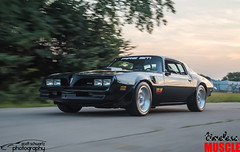 1978 Fire Am Tribute (scott597) Tags: 1978 fire am tribute trans pontiac firebird vse herb adams ls1