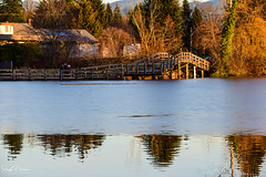 Mill Lake Foot Bridge - Abbotsford (SonjaPetersonPh♡tography ♡ Away Mar. 21-25) Tags: abbotsford bc bcparks park britishcolumbia canada nikon nikond5300 winter trails landscape birds view viewpoint views lake water milllake milllakepark scenic scenery fishing reflections ice footbridge walk walkingtrails floatingwharf floatingboardwalks boardwalks board sunset nature