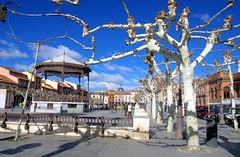 ALCALA DE HENARES MADRID 7743 27-1-2018 (Jose Javier Martin Espartosa) Tags: alcaladehenares patrimoniodelahumanidad wordheritagesite madrid españa spain