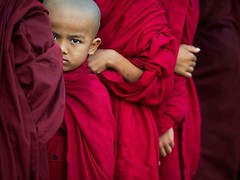 Buddhist monks (Gor .) Tags: monks monk red littleboy little tiny buddha buddhism buddhist dharma religion teaching peace love compassion true truereligion truth light lights eye smart look head bare barehead sad sadness sadeyes eyes glaze hand hands togather