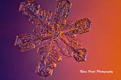 IMG_2751 (nitinpatel2) Tags: snowflakes winter snow macro crystal nature nitinpatel