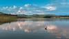 Furnas Lake - Guapé/MG - clouds (Enio Godoy - www.picturecumlux.com.br) Tags: 16x9 nikon vacations reflex reflections capitóliomg guapémg lake clouds bluesky d300s travel journey sky niksoftware viveza23772652310833 nikond300s dam furnaslake paysage