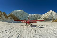 Denali again (lgflickr1) Tags: basecamp denali alaska mountain talkeetna airplane snow snowcaps otter