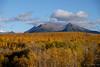 Autumn in Kamchatka (fournatz) Tags: paysageslandscapes lumiere automneautumn orange couleurscolor nuagesclouds bleublue pleinjourdaytime forêtforest paysages cielsky kamchatka volcanvolcano lieu typedephoto saison