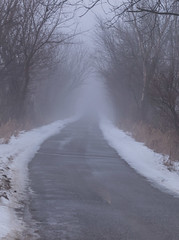 Fog Day #1 (tquist24) Tags: elkhartcounty indiana nikon nikond5300 outdoor pumpkinvinenaturetrail fog foggy geotagged snow trail tree trees winter goshen unitedstates