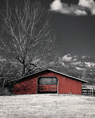Red Barn (finding_fl) Tags: canon canon70d 70d 2018 florida ocalaflorida 52weeksof2018 52weeksproject 52weeks selectivecolor red barn outdoors building farm tree sky canonef24105mmf4lisusm