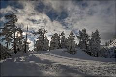Larra-Belagua003 (Fermin Ezcurdia) Tags: larra belagua navarra pirineo nieve pyrenees esquinordico arlasarette anie