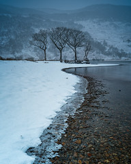 cold copse (akh1981) Tags: sunrise snow landscape lakedistrict lake lakeside nikon nisi nature nationalpark uk unesco cumbria countryside wideangle walking water crummockwater outdoors manfrotto mountains frost ice beautiful cold travel trees clouds fells rocks