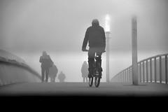 Cyclist, people ... and fog (jaume zamorano) Tags: blackandwhite blancoynegro blackwhite blackandwhitephotography boira brouillard blackandwhitephoto blackandwhitephtography d5500 fog foggy ground lleida monochrome monocromo mist nikon noiretblanc nikonistas niebla street streetphotography streetphoto streetphotoblackandwhite urban urbana pov cycling cyclist