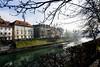 Ljubljanica, il sole dopo la nebbia (Carlo Volebele Vay) Tags: ljubljanica ljubljana slovenia winter inverno nebbia fog lubiana fiume river