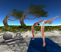 Yoga for Trees (ScottSilverdale) Tags: secondlife sl scottsilverdale tralalaloordes scotttralala traslegs tree trees yoga exercise beach dunes leaves exerciseequipment bendoverbackwards nopainnogain shorts bluesky exercisemat yogamat kitbag maitreya scandalize signature signaturegianni catwa birth mossu davidheather hs skye