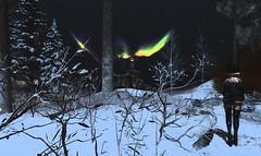 in the way ... (sanddlam) Tags: snow light night dark fur intoxx villena moonelixir mossu truth dox auroraborealis
