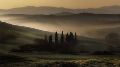 Calm Morning (Massetti Fabrizio) Tags: landscape landscapes light tuscany toscana tree sunrise sun sunlight sunset siena phaseone pienza panorami iq180 italia italy valdorcia fog fabriziomassetti famasse