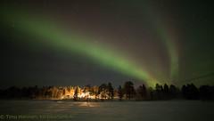 19.1.2018 (Hotel Korpikartano) Tags: green auroraborealis northernlights northernfinland korpikartanofi revontulet inarilapland menesjarvi